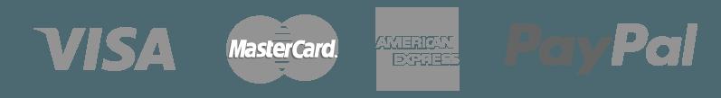 we accept visa mastercard american express and paypal